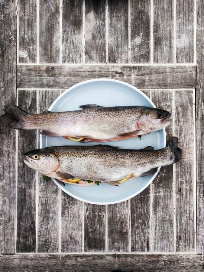 Рыба при белковой диете
